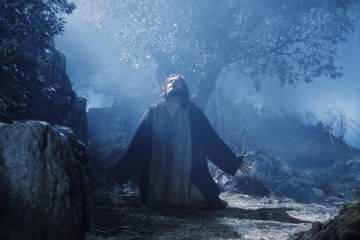 http://www.aref.de/highlights/2005/bibelflash/pics/gethsemane_passion-christi_360.jpg